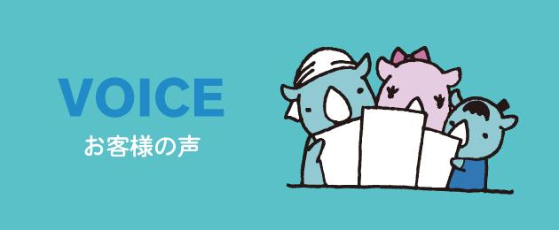 voice_image